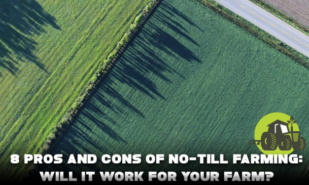 8 Pros And Cons Of No-Till Farming: Will It Work For Your Farm?